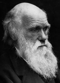 Marxism and social darwinism essay